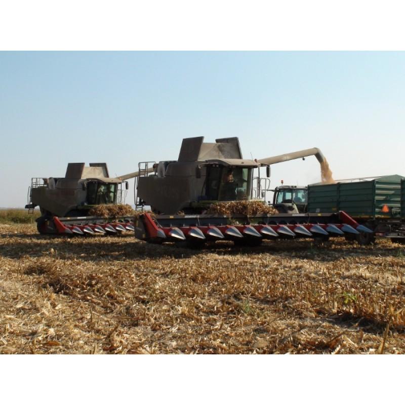 Жатки для уборки кукурузы Dominoni (Италия)