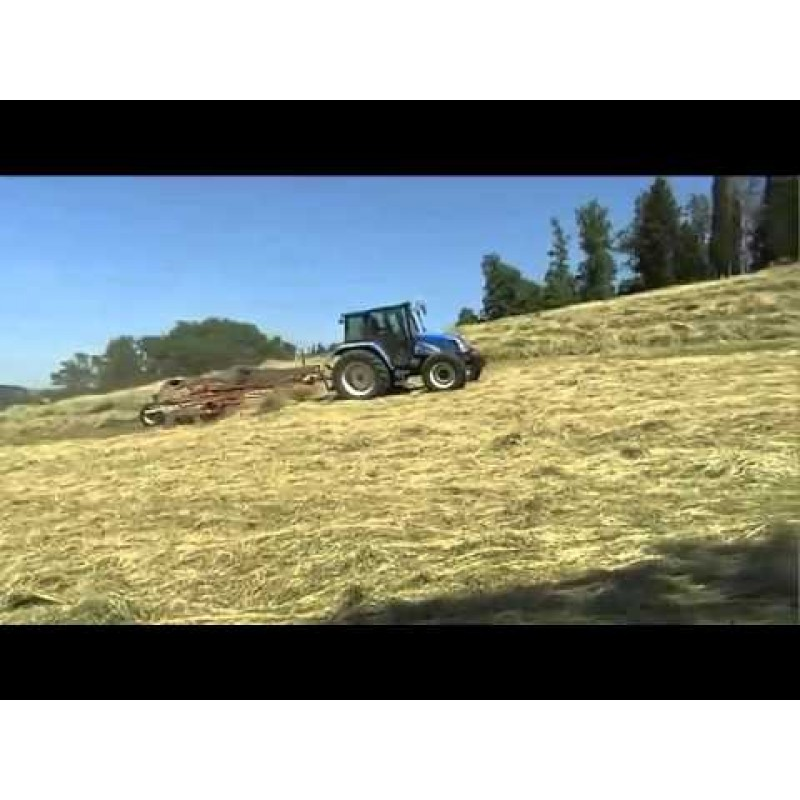 Грабли роторные, валкообразователи серии TW 7800 Sitrex Италия (шириной захвата до 7,6 м)